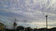 20140915iwashigumo