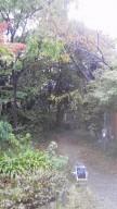 2014111hoshigaoka-6